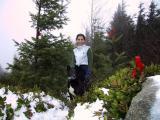 Tiger Mt. -- 12.30.2002