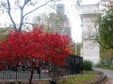 Fall 2002 & 2003 - Washington Square Park