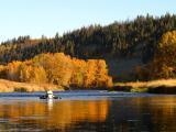 October 5, 2003 --- Bow River, Alberta