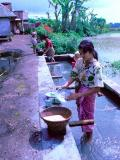 Washing the Dishes - Kamojang, Indonesia
