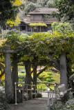 Japanese Garden Entry H7 IMG03056.jpg