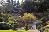 Japanese garden H7 IMG03061r.jpg