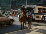 Mounted NYPD