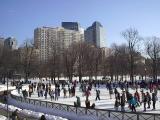 The Skate - Boston Commons
