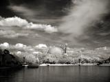 Epcot Landscape infrared