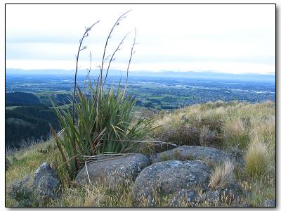 Christchurch from Mount Pleasant