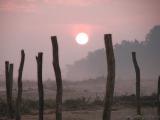 Terai Sunrise 31 Dec 02