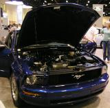 05 Ford Mustang