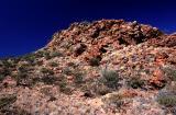Near King's Canyon -  Outback Australia