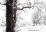 Snow Tree Illustration