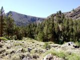 TrailScene