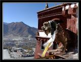 From the top of the Potala