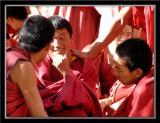 Debates at Sera Monastery 5