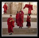 Student Monks at Sera Monastery