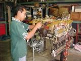 Installing the oil filter hsg.