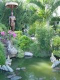 garden in chiang mai.jpg
