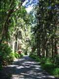 Boulevard Trail