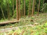 More Logging