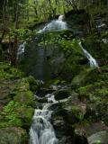 Waterfall at the mount Floyen