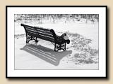 Lonely Bench Revisited