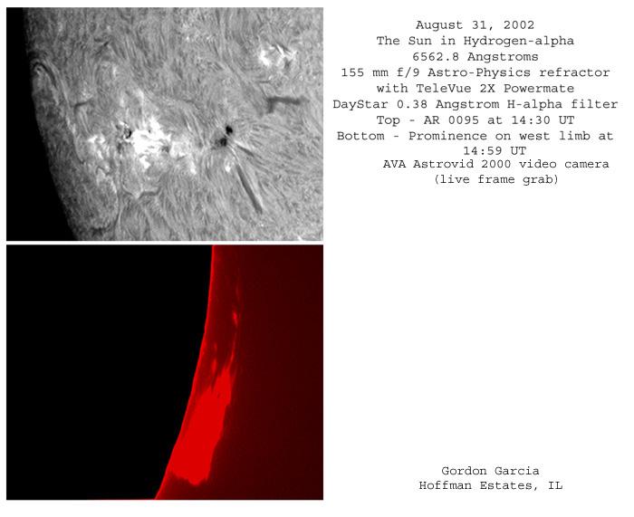 Sun in H-alpha, August 31, 2002