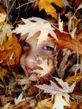 Autumn's hidden face