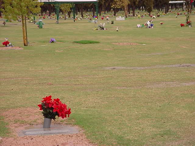 visiting Tarina on a Sunday 03-16-03