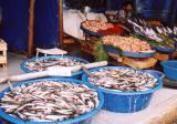 Istanbul Fish Market