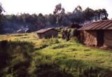 Some Houses that Were in Uganda
