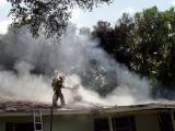 Smokey Roof