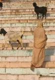 3India-1680.jpg