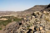 Most of the greenery around Sana'a is Qat