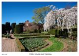Blossoming Cherry trees at Filoli House