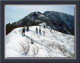 Snowy Ridge Trail