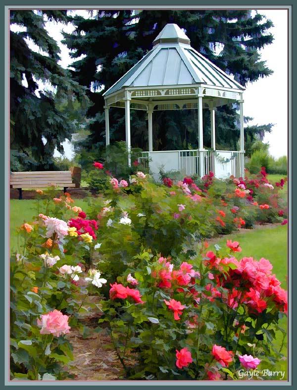 Gazebo in the Rose Garden