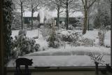 Winter on the Hooiweg