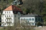 Houses beside the Neckar River