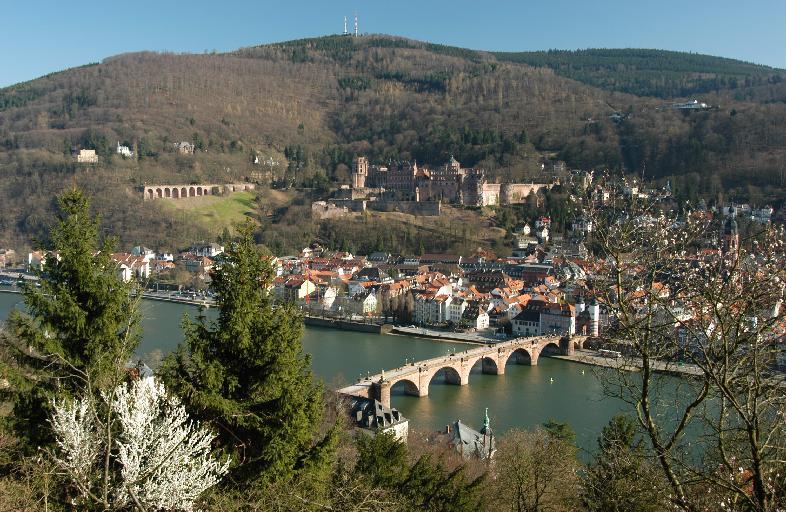 Marvellous view over Heildeberg...