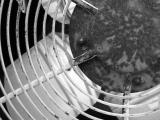 AC Fan BW1.jpg