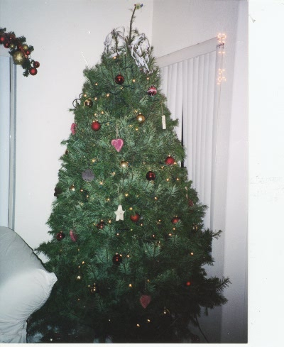 Our Xmas tree that we bought and setup all by ourselves.