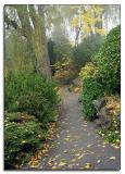Magical walkway