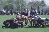 02n-37-StClara-Uni-Rugby