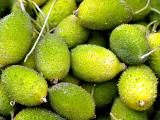 spiky fruit