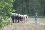 preparing the fields