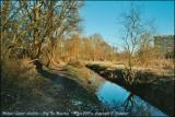 Hof Ter Musshen. Woluwe-Saint-Lambert.. Hiver 2001.