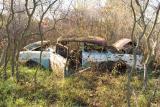 Old Chevy *.jpg