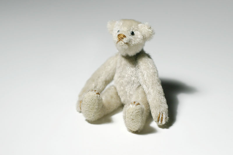 May 18, 2005<br>Tiny Bear