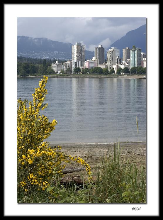 Vancouver skyline from Kitsilano