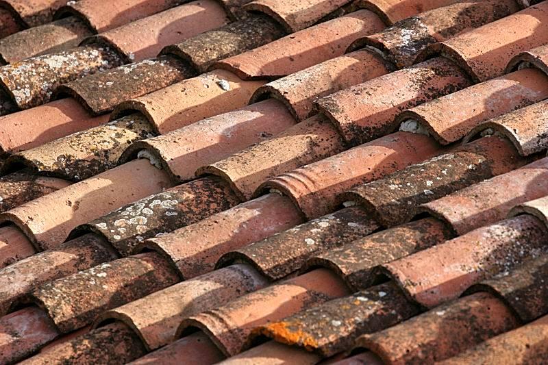 Terra Firma roof tiles