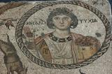 Yakto mosaic